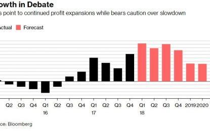 EC                                                  The Bull & Bear Case For Stocks