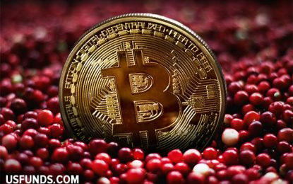 What Thanksgiving Cranberries And Bitcoin Have In Common