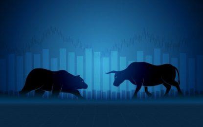 Bull vs Bear – A beginners guide for dummies