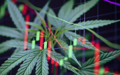 Should you invest in cannabis stocks? Diversify your trading portfolio