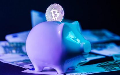 Is bitcoin a wise investment now?